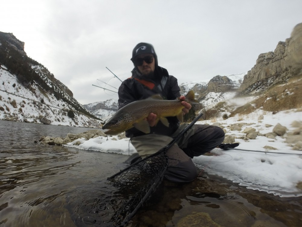 Kramer with a streamer eating Brown Trout.